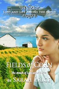 Fields of Corn by Sarah Price