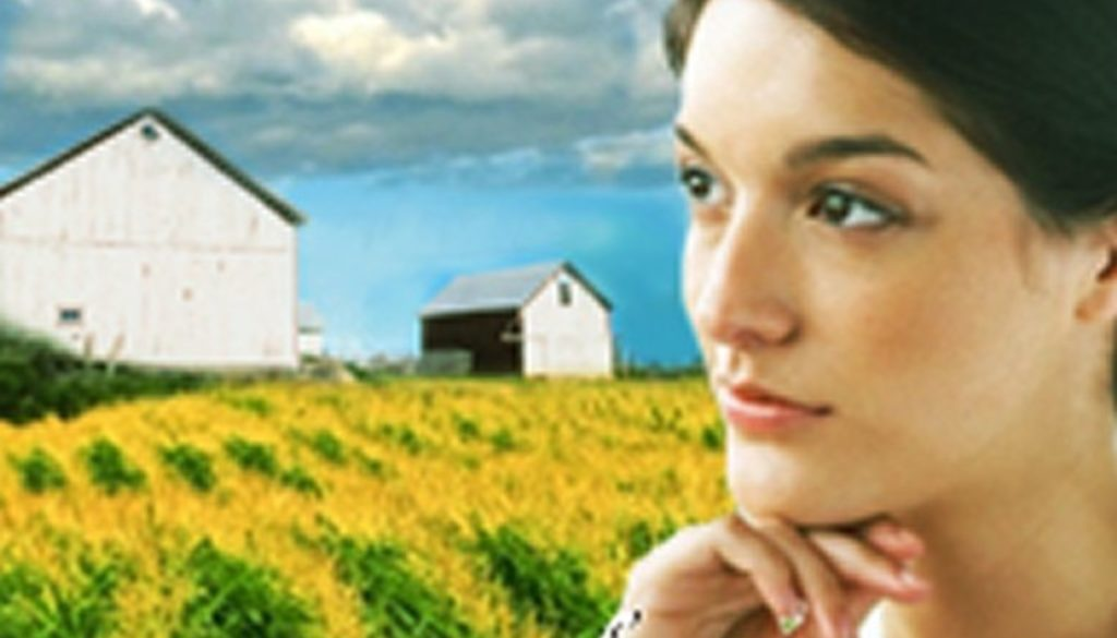 Fields of Corn by Sarah Price