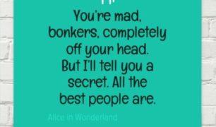 alice-bonkers