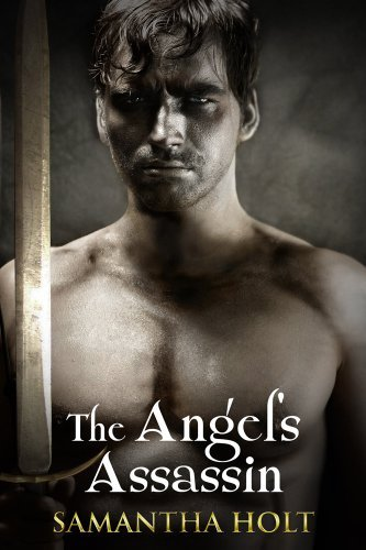 The Angel's Assassin by Samantha Holt