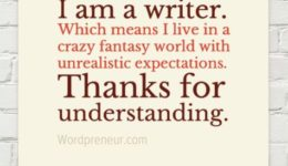 I am a writer ... unrealistic expectations.