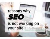 SEO is not working on my site – Here is the fix to get better search results