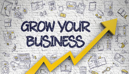 Growing your full-time indie publishing business | Business Books For Writers