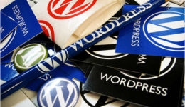The Ultimate WordPress Guide