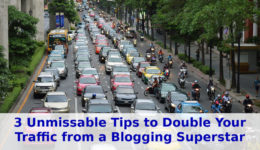 3 Unmissable Tips to Double Your Traffic from a Blogging Superstar | WTD