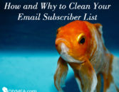 How and Why to Clean Your Email Subscriber List