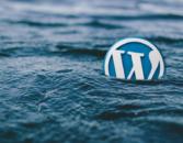 Ways to Make your WordPress site More Professional – WPArena
