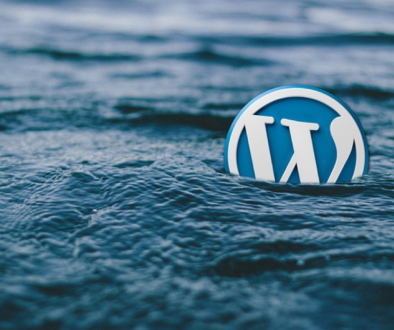 Ways to Make your WordPress site More Professional – WPArena