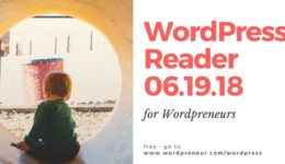 wordpress 061918