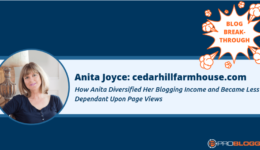 268: How Anita Diversified Her Blogging Income and Depended Less On Page Views – ProBlogger